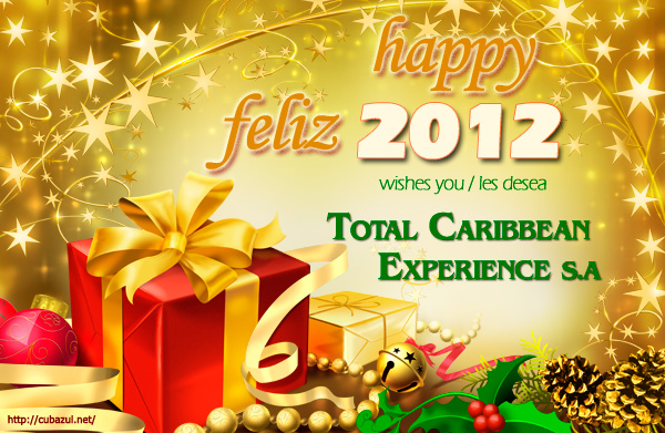 TCE wishes you a Happy 2012!